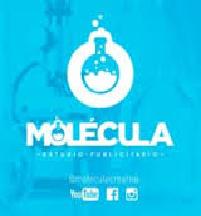 Molecula Creative y Graphic Lab