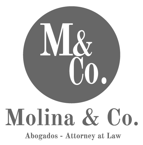 Molina & Co -  Attorney at Law